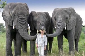 Jan Brett with elephants